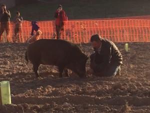 Exhibición de caza de la trufa negra en Fitruf, Sarrión