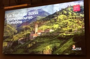 La trufa de Soria como recurso turístico