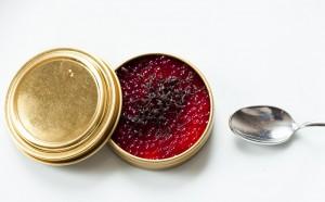 Caviar de remolacha, requesón y trufa negra tuber melanosporum