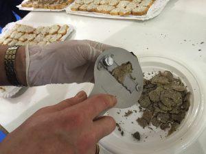 Degustación trufa negra en Intur