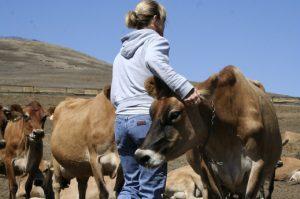 Mujer en la ganadería y medio rural